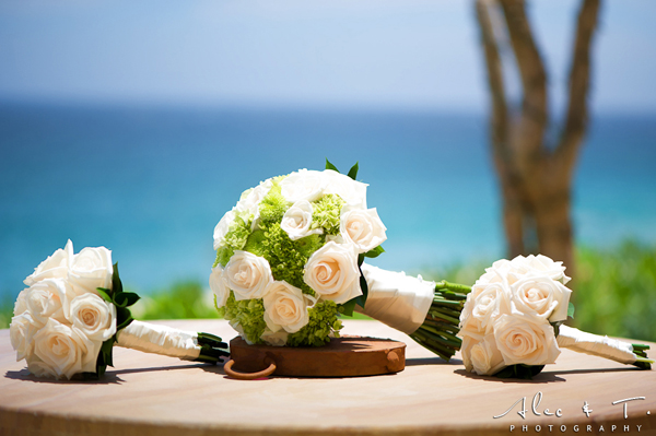 Cabo San Lucas Destination Wedding Capella Pedregal Resort Mexico